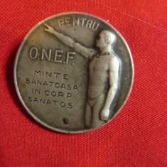 Insigna ONEF - Minte sanatoasa in corp sanatos , d= 2,5cm ,metal argintat