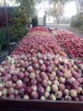 Vând mere diferite soiuri