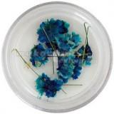 Flori uscate turcoaz
