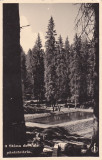 STANA DE VALE JUD.BIHOR,1938 PASTRAVARIA,ROMANIA.