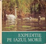 Expediție pe iazul morii