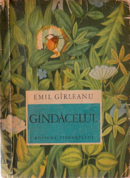 Gandacelul Arhiva Okaziiro