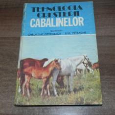 Tehnologia cresterii cabalinelor - Gh Georgescu