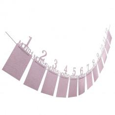 Suport fotografii, pentru bebelusi, 1 - 12 luni, culoare roz