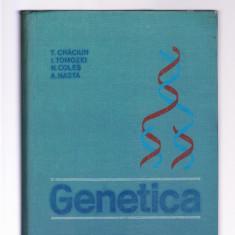 GENETICA, 2018