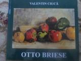 OTTO BRIESE (CU DEDICATIA AUTORULUI) - VALENTIN CIUCA