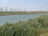 Super ocazie pt investitie – balti piscicole, Teren extravilan