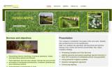 Proiect HTML CSS - site de prezentare