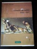 Carnetele de razboi 1916 - 1917 ale lui Grigore Romalo, DaCor, 187 pag