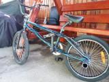 BMX Supreme Bikes, 19, 1, 20