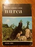 Nurca - I. Croitoru / R6P1F