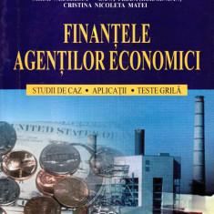 Finanțele agenților economici
