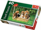 Puzzle Catelusi Beagle, 60 piese, Trefl