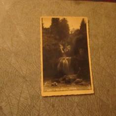 cp toplita cascada an 1939 cp 40
