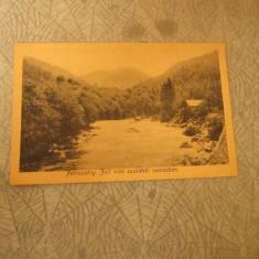 cp petrosani an 1919 in maghiara album 272