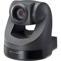 Camera profesionala Sony color Evi-D70/D70P(PAL)