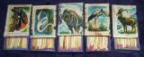 Animale, Pasari - 5 cutii de chibrituri romanesti din lemn Bucuresti 1979-1980