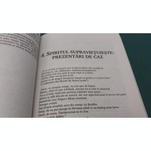 EXISTĂ VIAȚĂ DUPĂ MOARTE?/ ROBERT KASTENBAUM/ 1998