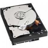Hard Disk intern Western Digital Black 500 GB SATA 3 7200 RPM 64 MB