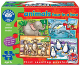 Set 4 Puzzle Animale (4 6 8 & 12 Piese) Animals Four In A Box, orchard toys