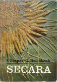 AS - GASPAR I., REICHBUCH - SECARA