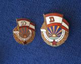 Insigne Tanarul dinamovist - 2 variante