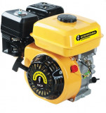 Motor benzina Gospodarul Profesionist 13CP