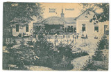 4311 - TINKA, Bihor, Romania - old postcard - unused - 1917, Circulata, Printata