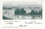 4303 - SFANTU GHEORGHE, Romania, Litho - old postcard - used - 1899, Circulata, Printata
