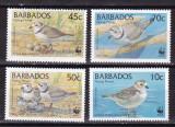 Barbados 1991 fauna  pasari  MI 770-773  MNH w53