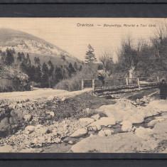 ORAVITA    BANYAVOLGY  CIRCULATA 1911, Printata