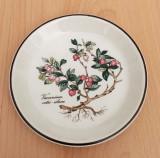 Farfurie - decorativa / colectie / fructe - Villeroy and Boch - Botanica