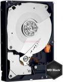 HDD Desktop Western Digital Caviar Black Advanced Format, 2TB, SATA III 600, 64MB Buffer, Western Digital
