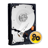 Hard Disk WD RE4 1TB, 7200rpm, 64MB cache, SATA II, WD1003FBYX, Western Digital