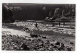 Valea Bistritei cu plutele spre Brosteni  RPR