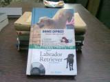 Your happy healthy pet. Labrador Retriever - Liz Palika (Animalul tău sănătos fericit)