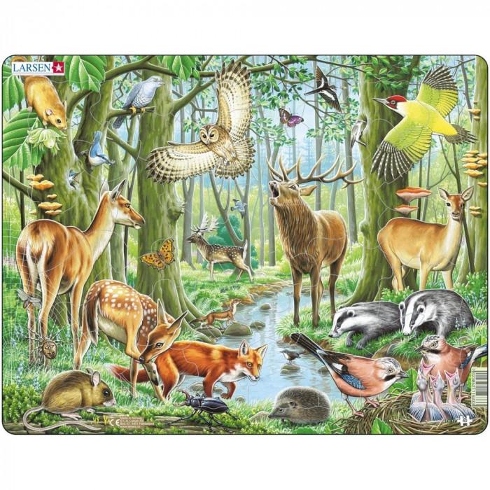 Puzzle Padurea Europeana, 40 Piese Larsen LRFH17 B39016865