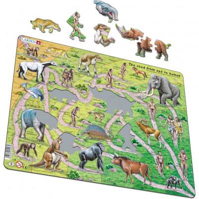 Puzzle Etapele Evolutiei, 83 Piese Larsen LRHL3-GB B39016878 foto