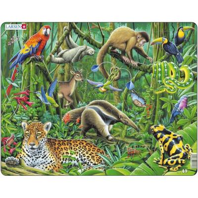 Puzzle Padurea Tropicala din America de Sud, 70 Piese Larsen LRFH10 B39016858 foto