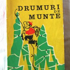 """""""DRUMURI DE MUNTE"""", I. Ionescu-Dunareanu, 1971, Alta editura"""