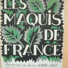 LES MAQUIS DE FRANCE ( PEINTURES DE  JEAN AMBLARD )