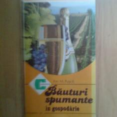 w4 Bauturi spumante in gospodarie – Ion M. Pusca