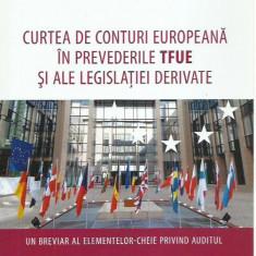 AMS - BOSTAN IONEL - CURTEA DE CONTURI EUROPEANA IN PREVED. TFUE (CU AUTOGRAF)