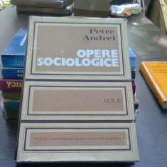 Opere sociologice - Petre Andrei vol.4