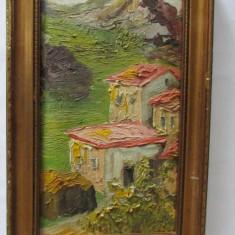 2-TABLOU-SAT DE MUNTE-inramat,ulei pe panza,vintage, Peisaje, Realism