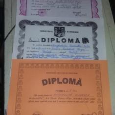 Set 3 Diploma/Diplome vechi ale aceleiasi persoane,de colectie,T.GRATUIT