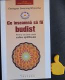 Ce inseamna sa fii budist DZONGSAR JAMYANG KHYENTSE