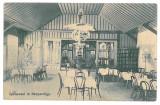 733 - ORAVITA, Caras, Restaurant, Romania - old postcard - used - 1907, Circulata, Printata