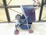 Hauck / carucior sport copii 0 - 3 ani, Altele
