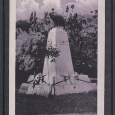 ZALAU   STATUIA   TURUL, Necirculata, Printata